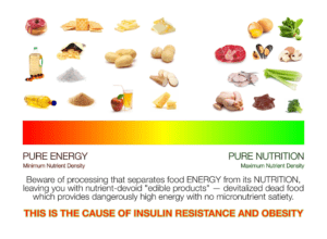 Dr Ted Naiman's diet diagram